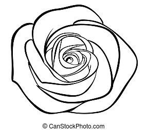 silueta, esboço, isolado, rosa, pretas, branca