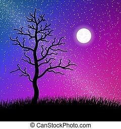 silueta, estrelado, árvore, noturna, capim, céu