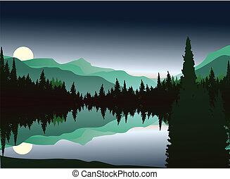 silueta, floresta, pinho