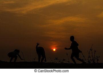 silueta, grupo, de, feliz, jogar crianças, ligado, prado, pôr do sol, s