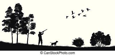 silueta, hunting., natureza, caçador, cão, forest., pretas, pato, selvagem, paisagem