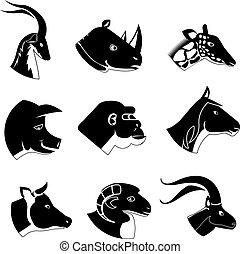 silueta, iconos, cabezas, animal