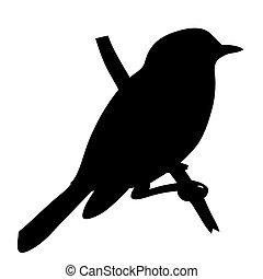 silueta, ilustração, fundo, vetorial, pássaro branco