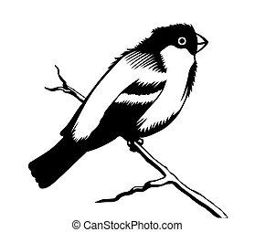 silueta, ilustrace, grafické pozadí, vektor, běloba ptáci