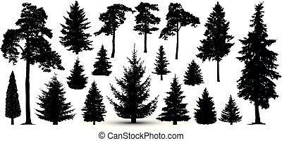 silueta, jogo, árvores, floresta, vector., pinho, asseado
