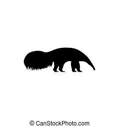 silueta, oso hormiguero, vector