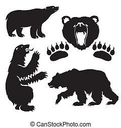 silueta, oso