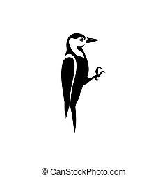 silueta, pájaro carpintero, vector, ilustración