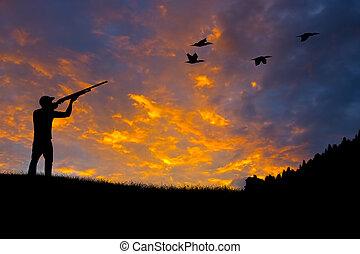 silueta, pájaro, caza