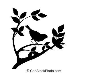 silueta, pájaro, en, árbol