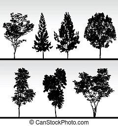 silueta, pretas, árvore