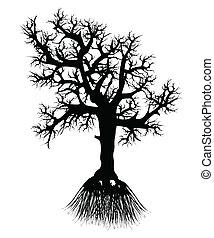 silueta, raiz árvore