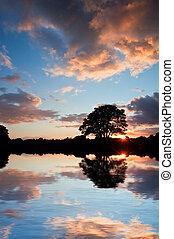 silueta, refletido, água lago, impressionante, pôr do sol,...