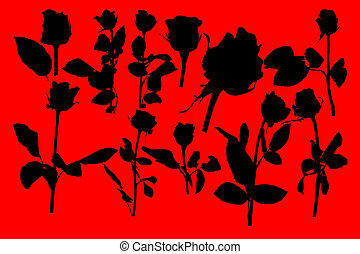 silueta, rosa, isole, experiência., preto vermelho