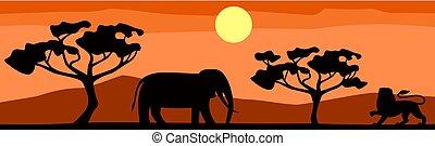 silueta, savannah, lion), paisagem, animal, africano, (elephant