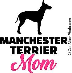 silueta, terrier, mamá, manchester