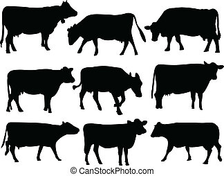 silueta, vaca