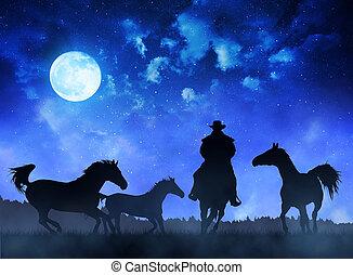 silueta, vaquero, ingenio, caballos, por la noche, sky.
