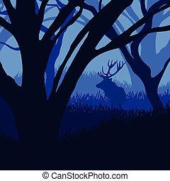 silueta, veado, floresta