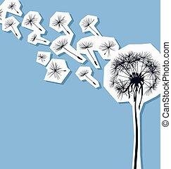 silueta, vento, dandelion