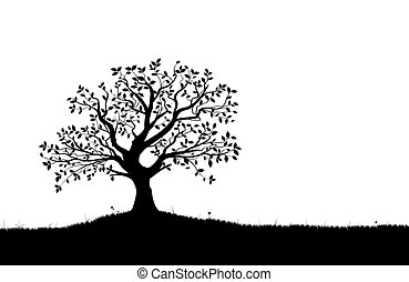 silueta, vetorial, vectorial, árvore