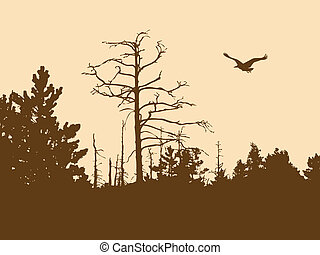 silueta, viejo, madera, en, fondo marrón