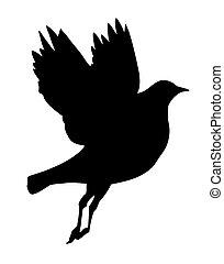 silueta, vuelo, aves, blanco, plano de fondo