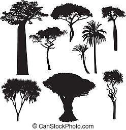 siluetas, árbol, africano