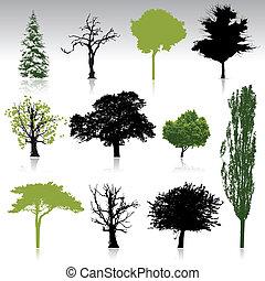 siluetas, árbol, colección