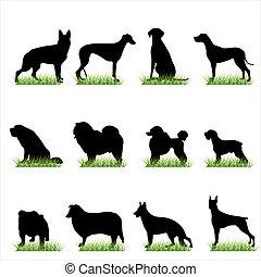 siluetas, 12, conjunto, perros