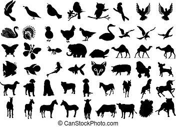 siluetas, animal