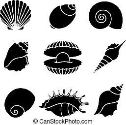 siluetas, blanco, aislado, conchas de mar