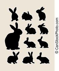 siluetas, conejo