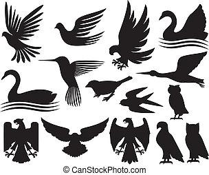 siluetas, conjunto, aves