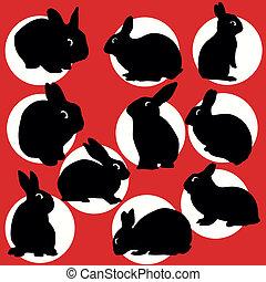 siluetas, conjunto, conejos