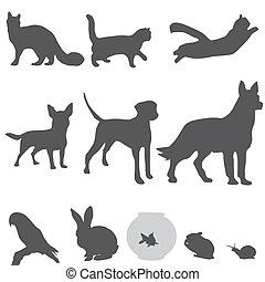 siluetas, conjunto, mascotas