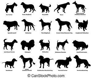 siluetas, conjunto, perros