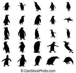 siluetas, conjunto, pingüino