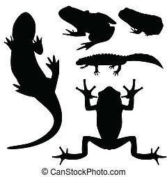 siluetas, de, anfibios, vector