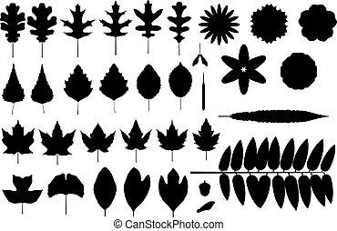 siluetas, de, hojas, y, flores
