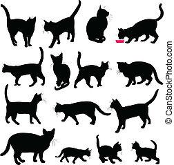 siluetas, gatos