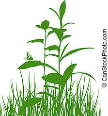 siluetas, pradera, verde, hierbas