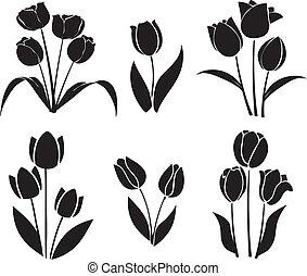 siluetas, tulipanes, vector