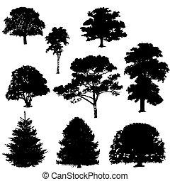 siluetas, vector, árbol, ilustración