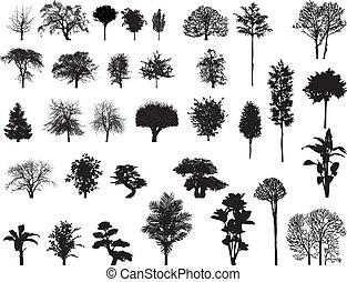 siluetas, vector, árboles