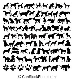 siluetas, vector, perros