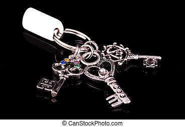 Silver Keys on a Keyring