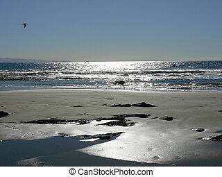 Beach in silver light near Santa Barbara (Arroyo Burro Beach), California, USA