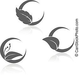 simboli, foglia, vettore, naturale, black-white