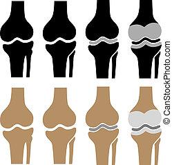 simboli, ginocchio, vettore, giuntura umana